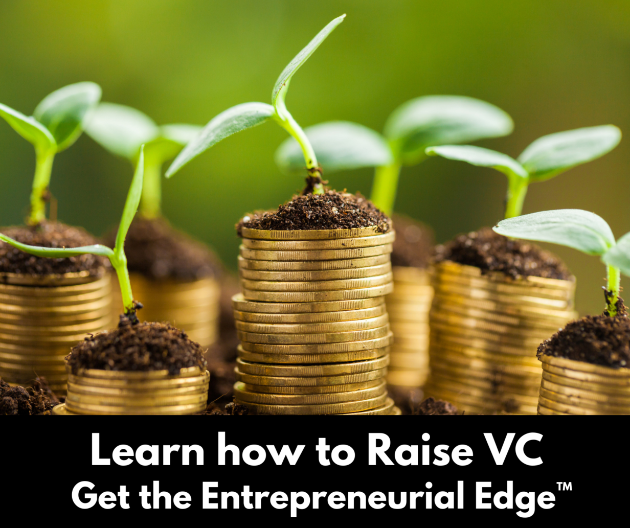 Learn how to raise venture capital - entrepreneur's edge - reagan pollack